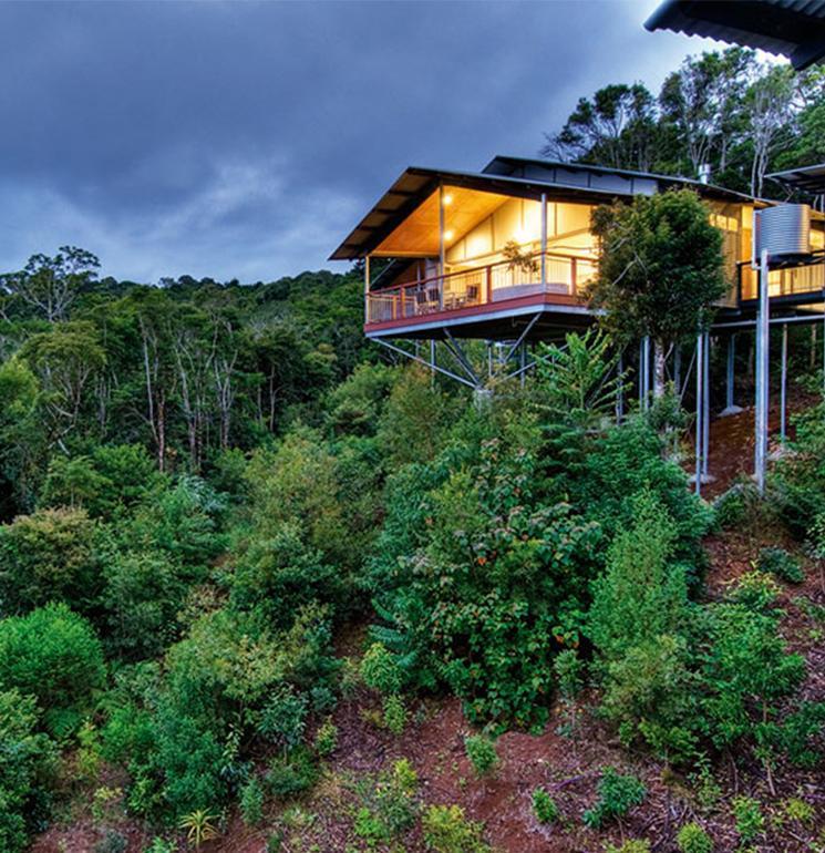 O'Reilly's Rainforest Retreat List Image