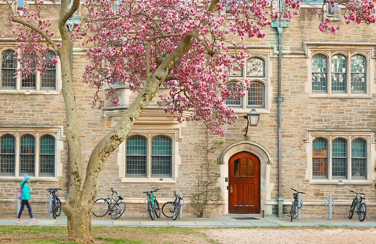 Princeton Image 1